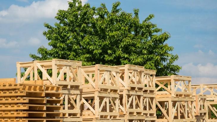 Vendita delle casse in legno